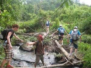 trekking a chiang mai avec guide
