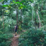Randonee a Chiang Mai - Treeking