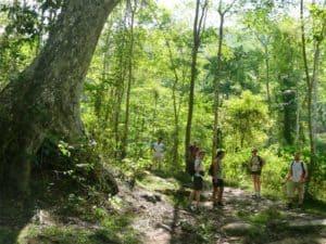Trek a Chiang Mai, randonnée de 1 journée