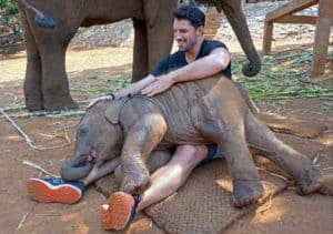 Jouer avec un bébé éléphant a Chiang Mai