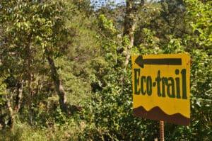 Eco trek a Chiang Mai, le vrai du faux
