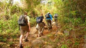 Prix d'un trek a Chiang Mai suivant la durée